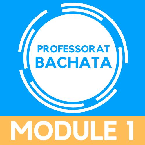 devenir professeur de bachata, module 1